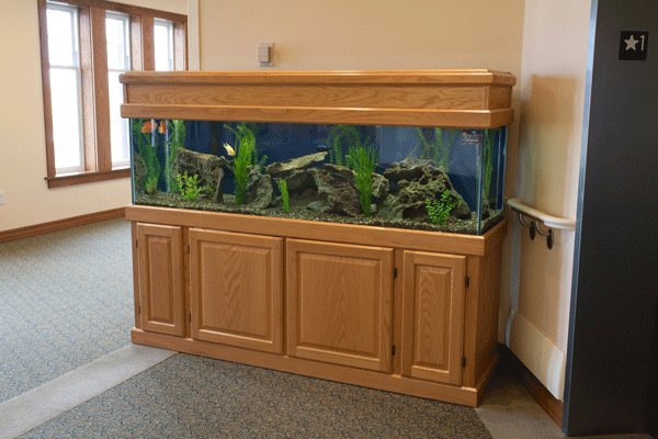 Oak cabinetry surrounding 125 gallon fish tank at retirement home