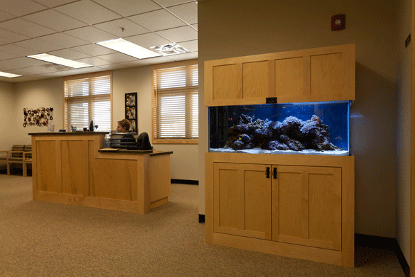Professional Aquarium services 75 Gallon in clinic waiting room