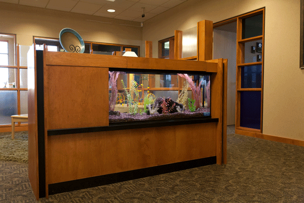 Professional aquarium service at Union Bank with 55 gallon fish tank
