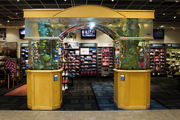 Commercial Aquarium Sales - Scheels All Sports - 1200 Gallons