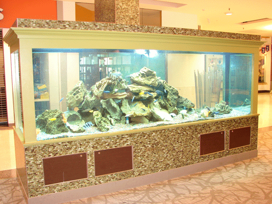 Commercial Aquarium Services West Acres Mall